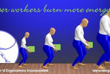 bigger burns more energy